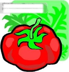 番茄矢量素材