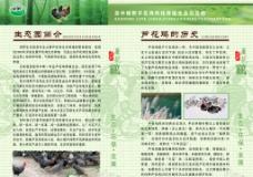 生态园简介 芦花鸡的历史图片