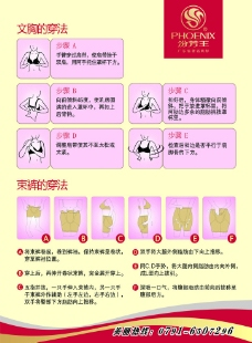 汾芳王 彩页图片