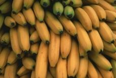 香蕉?#35745;? style=