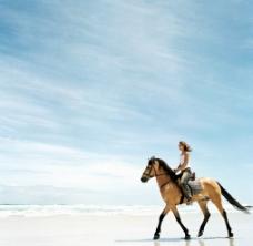 美女海边骑马图片