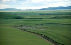 内蒙古呼伦贝尔大草原上的羊群图片