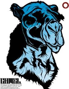 蓝色的骆驼图片