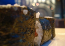 寿司卷图片