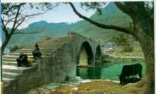古桥新韵图片