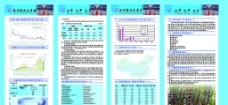 鸿庆信息服务公司信息服务 公司模板 韩国模板 psd素材图片