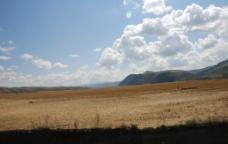 唐布拉大草原图片