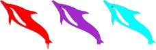 海豚矢量圖圖片