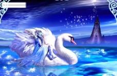 绝美天鹅湖图片
