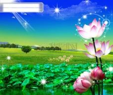 蓝天白云荷塘风景
