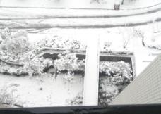最新冬季白雪图图片