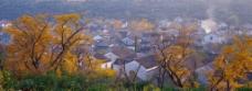 生态乡村图片