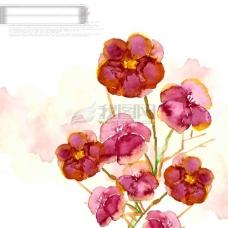 PSD水墨花朵