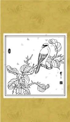 花鸟系列(九)图片