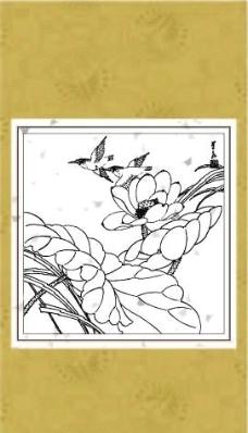 荷花翠鸟图片