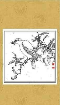 花鸟系列(八)图片