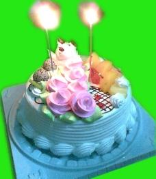 两岁生日蛋糕图片