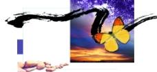 蝴蝶墨水石图片