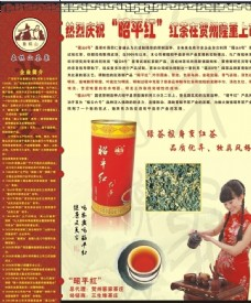 茶 红茶 茶道 宣传页