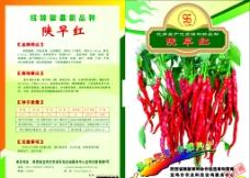 辣椒种子包装设计图片
