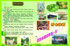 木柴全羊宣传册2图片