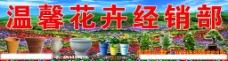 温馨花卉经销部图片